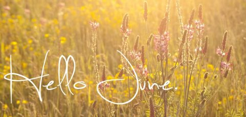 Sunshine & Summertime – June News
