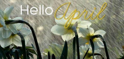 Snow still – April News